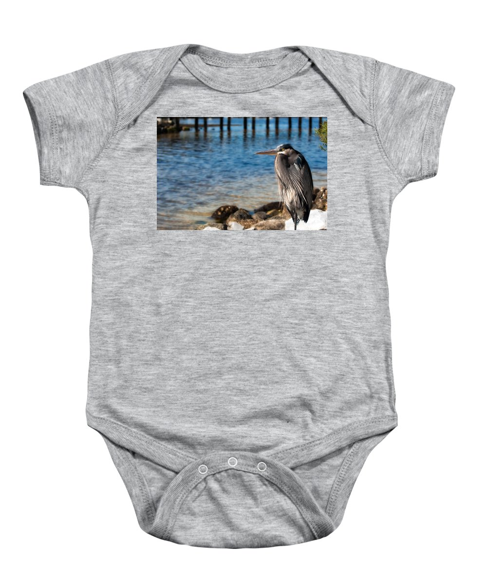 Heron Baby Onesie featuring the photograph Regal Great Blue Heron by Rich Leighton