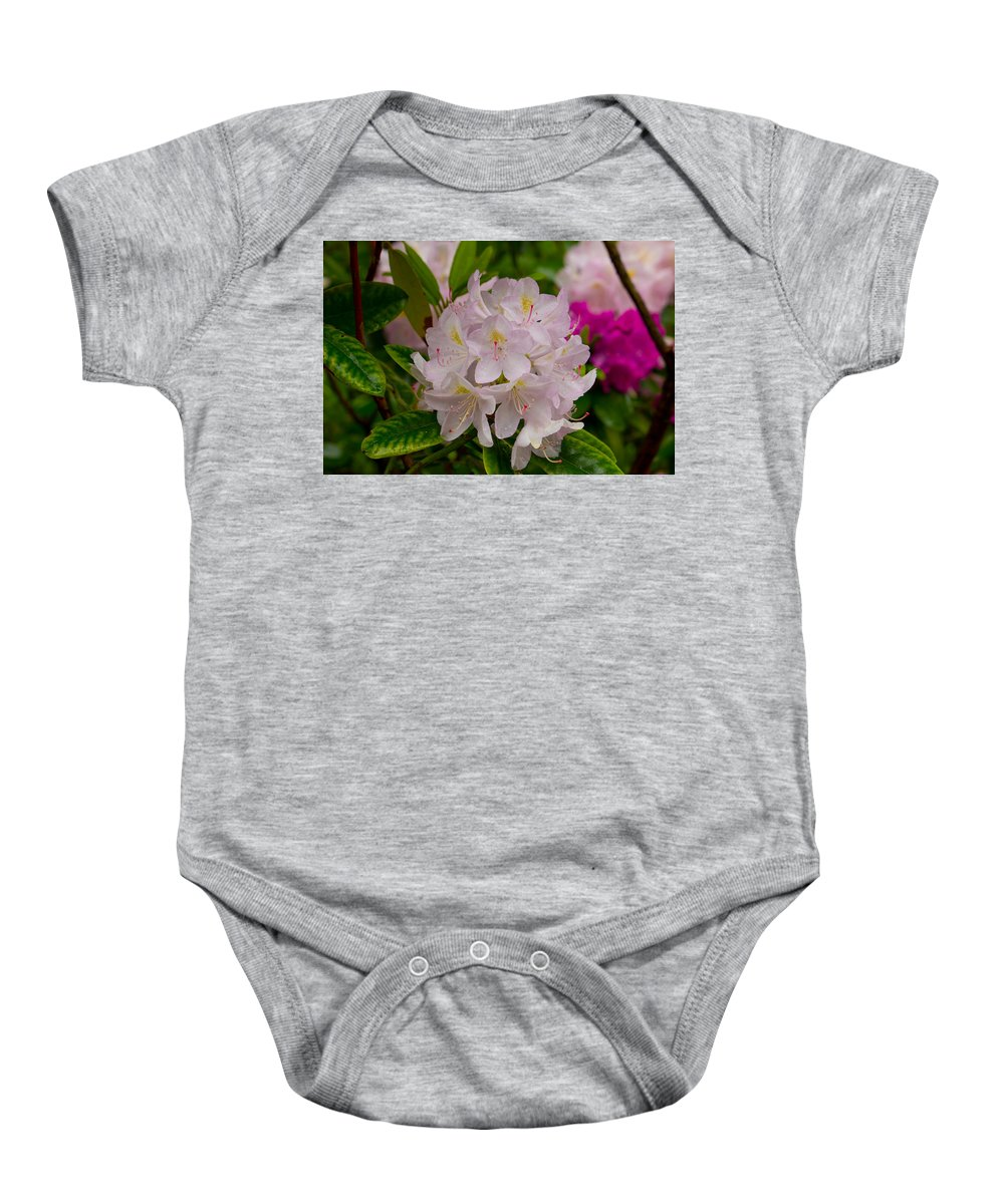 Rhododendron Baby Onesie featuring the photograph Rhododendron by Karl Asher