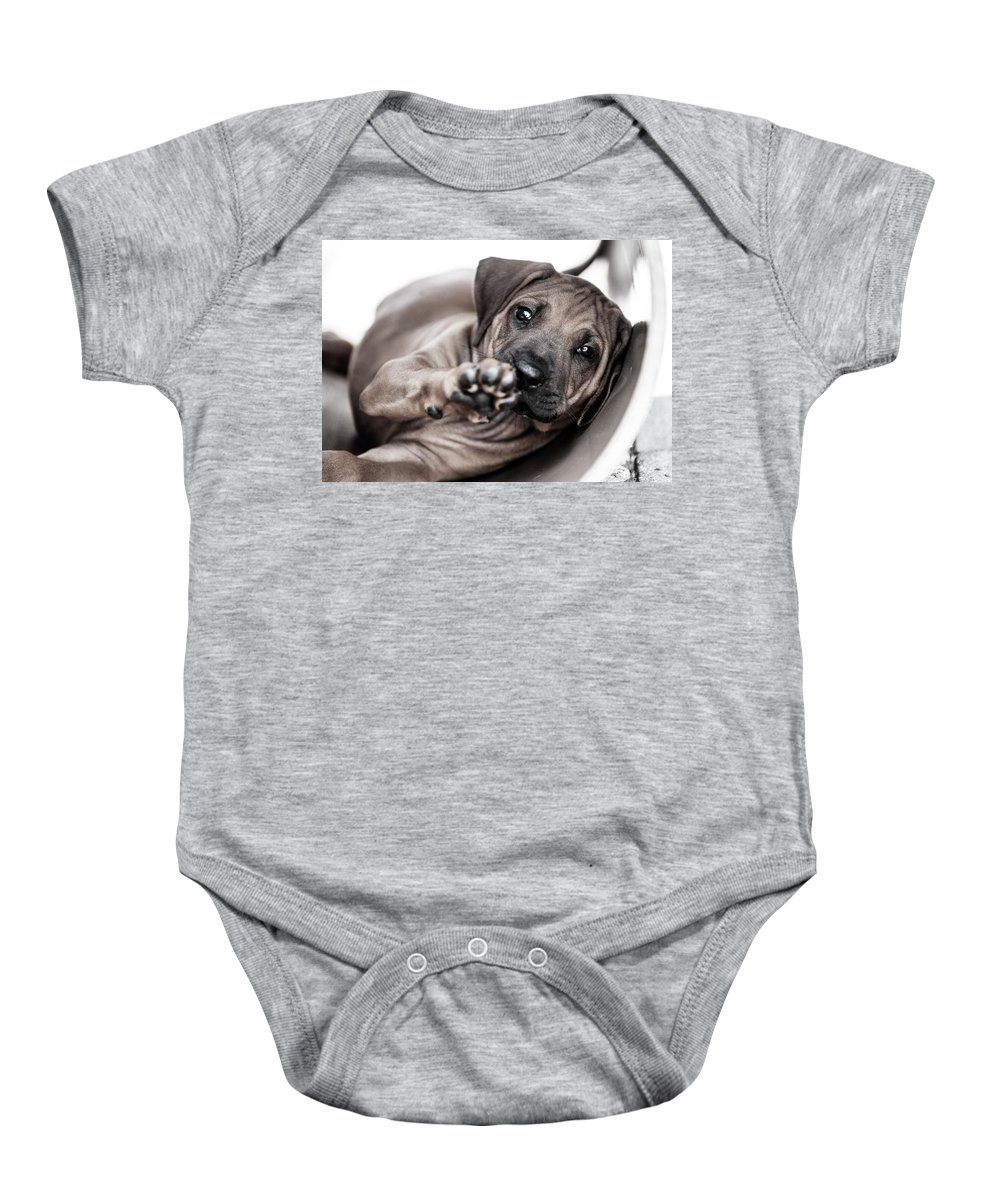 Puppy Baby Onesie featuring the photograph Ridgeback Paw by Lena Lottsfeldt Vincken