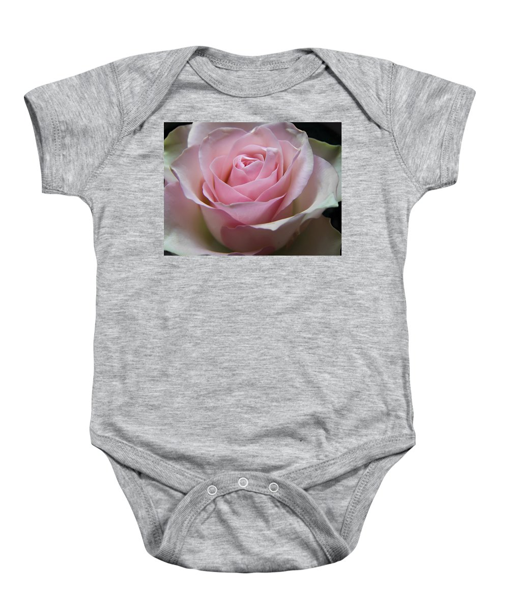 Rose Baby Onesie featuring the photograph Rose by Daniel Csoka