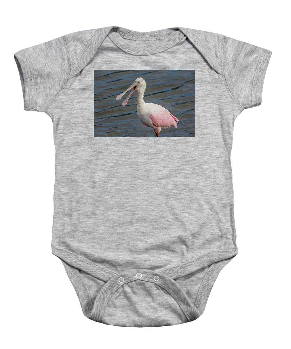 Celery Fields Baby Onesie featuring the photograph Roseate Spoonbill With Something To Say by Richard Goldman