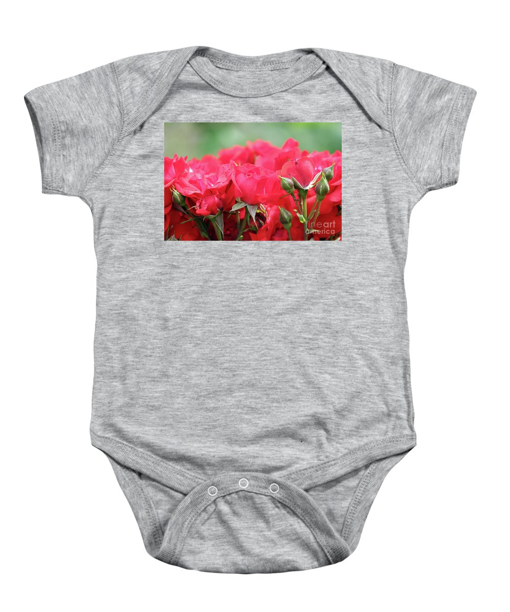 Rose Baby Onesie featuring the photograph Roses Close Up Nature Spring Scene by Goce Risteski