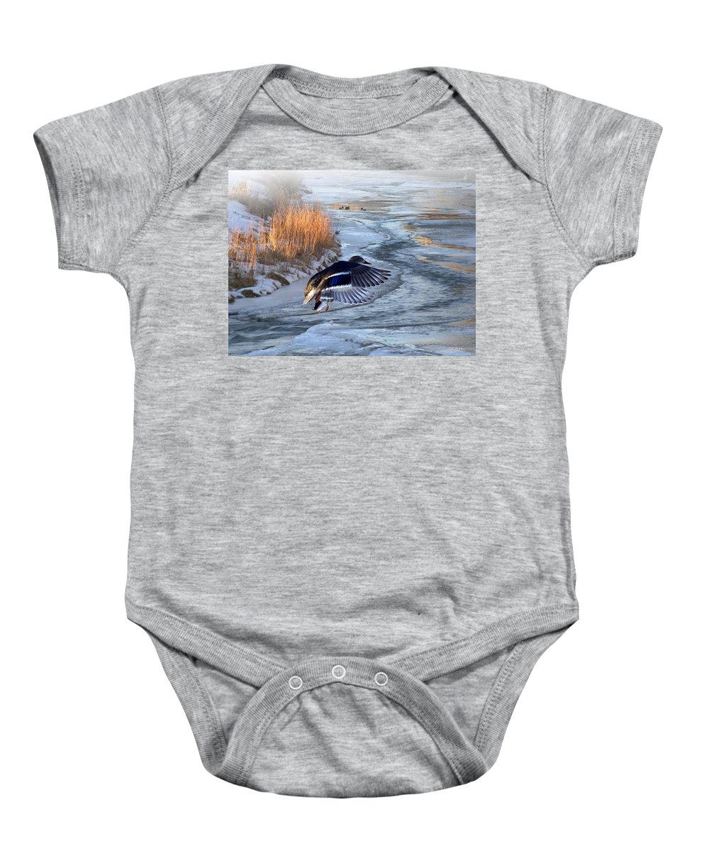 Mallards Baby Onesie featuring the mixed media Round The Bend by Bill Stephens