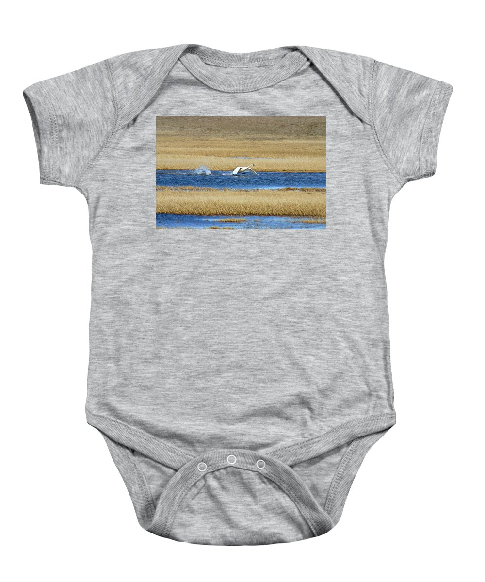Swan Baby Onesie featuring the photograph Running On Water by Anthony Jones