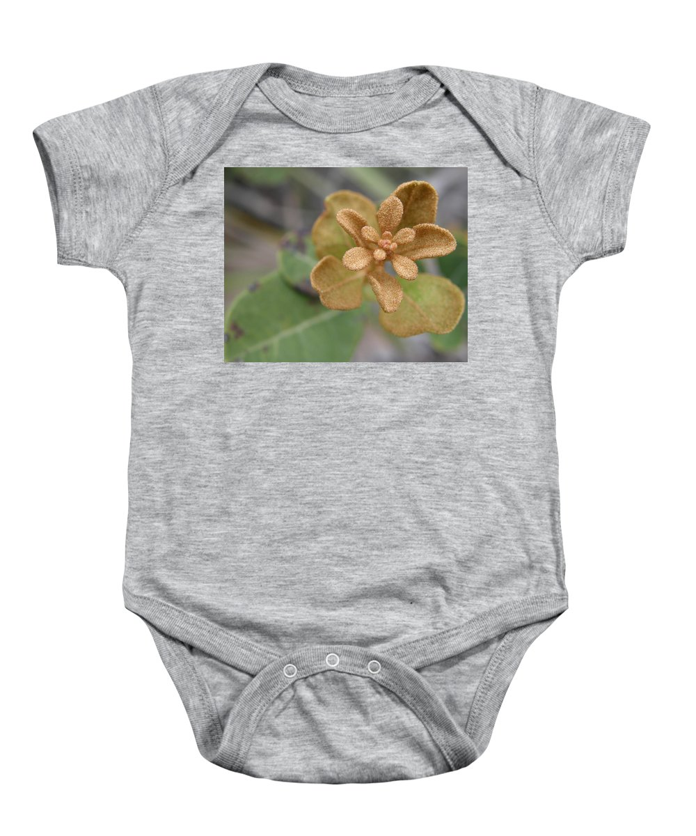 Plant Baby Onesie featuring the photograph Rusty Lyonia by Kimberly Mohlenhoff