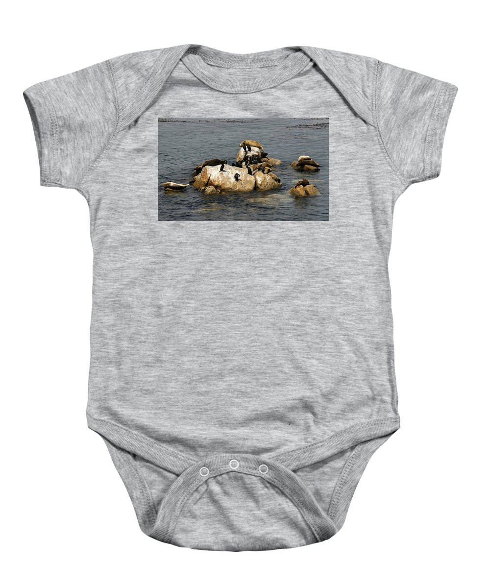 Pebble Beach Baby Onesie featuring the photograph Sea Lions And Birds by Marilyn Hunt