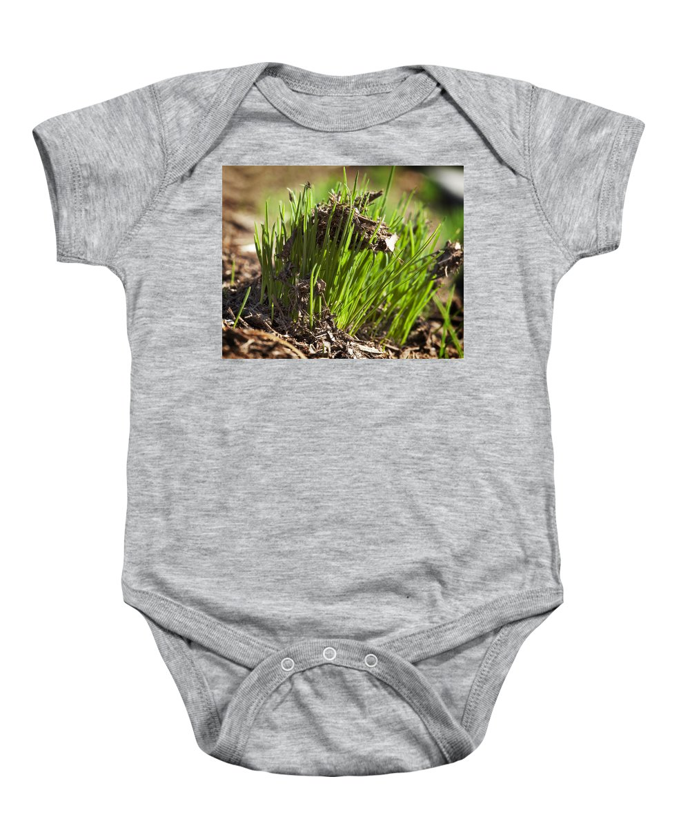 Grass Baby Onesie featuring the photograph Seedlings by Kelley King