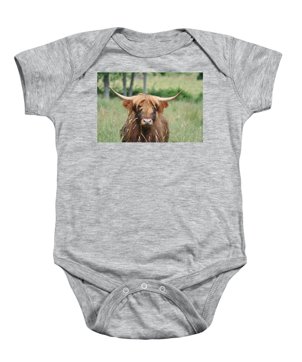 Cow Baby Onesie featuring the photograph Shaggy by Bill Cannon