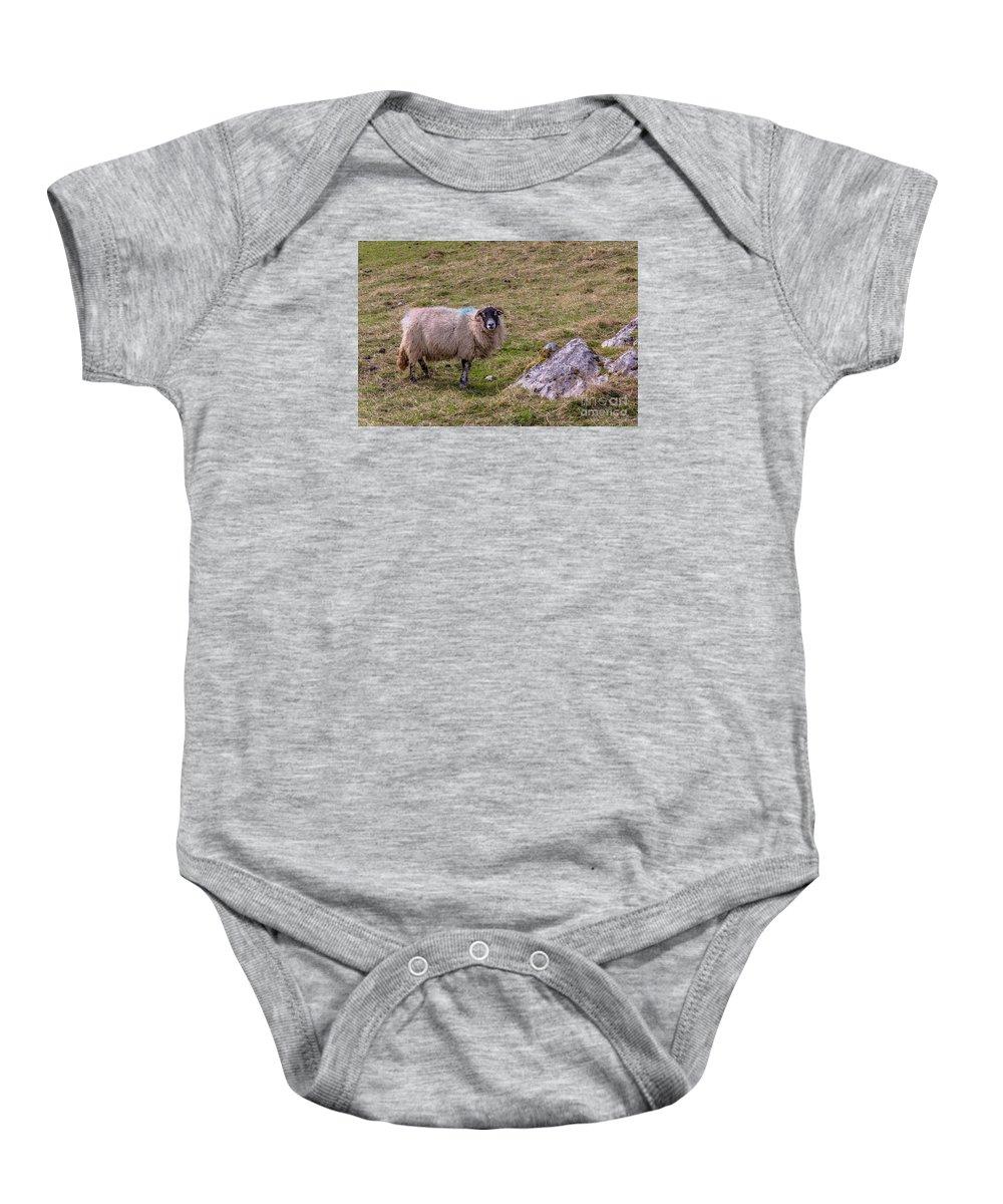 D90 Baby Onesie featuring the photograph Sheep by Mariusz Talarek