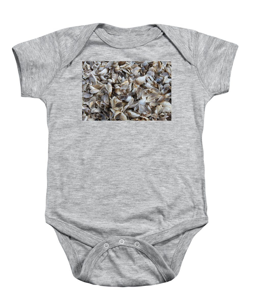 Shells Baby Onesie featuring the photograph Shells by Lauri Novak
