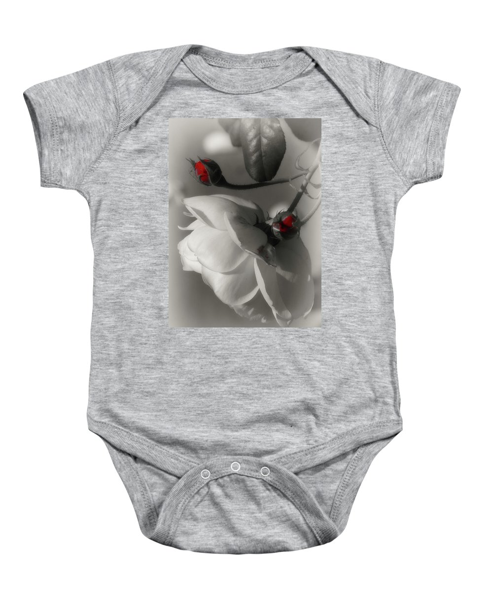 White Rose Baby Onesie featuring the photograph Shy White Rose by Cate Franklyn