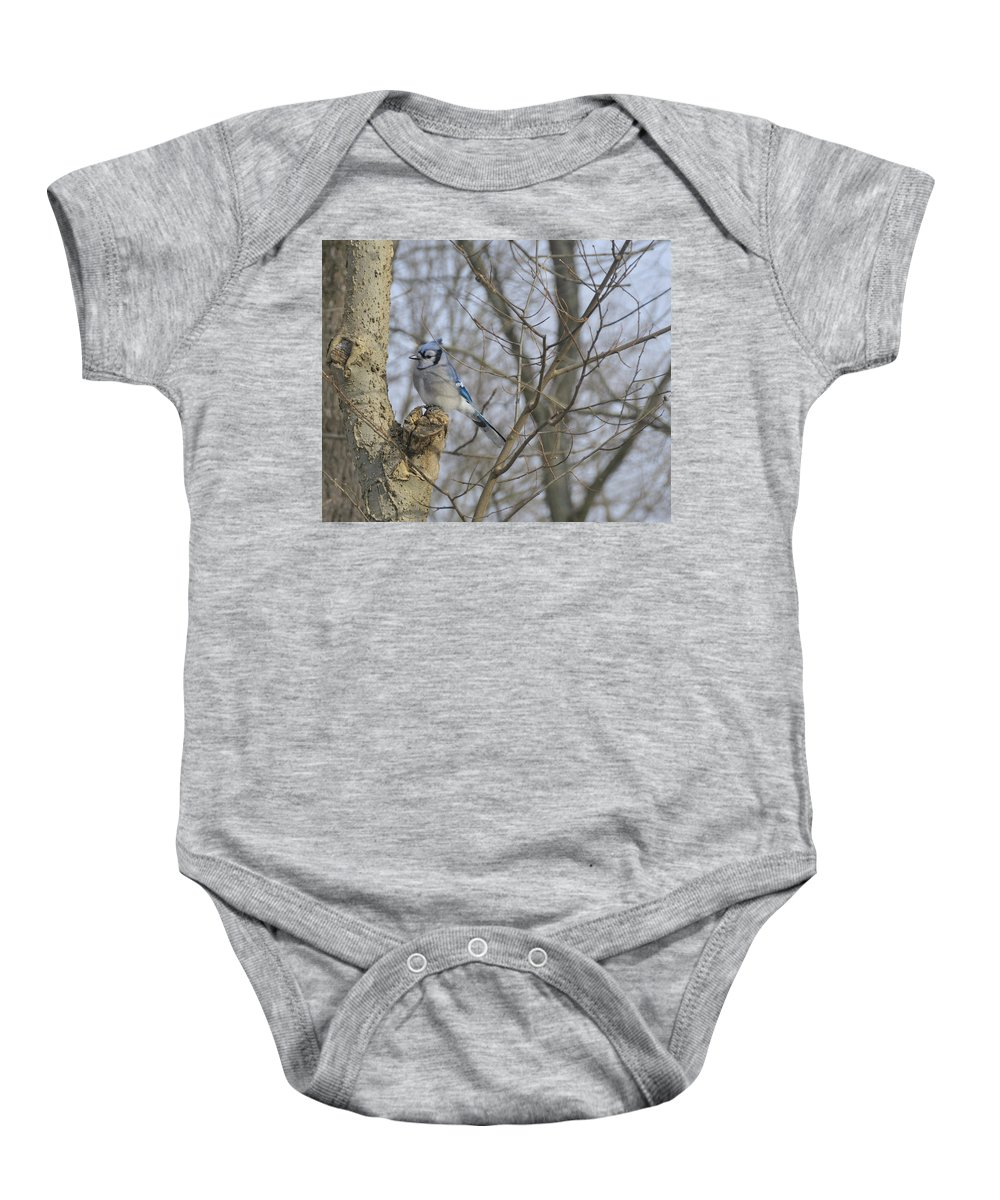 Bird Baby Onesie featuring the photograph Sitting by David Arment