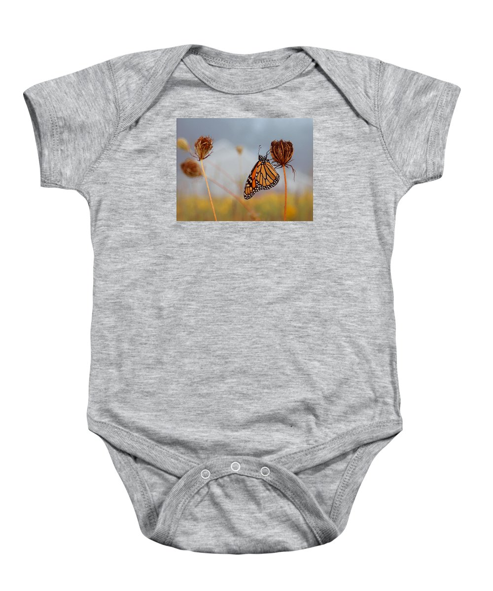 Monarch Butterfly Baby Onesie featuring the photograph Sleeping Beauty by Linda Murphy