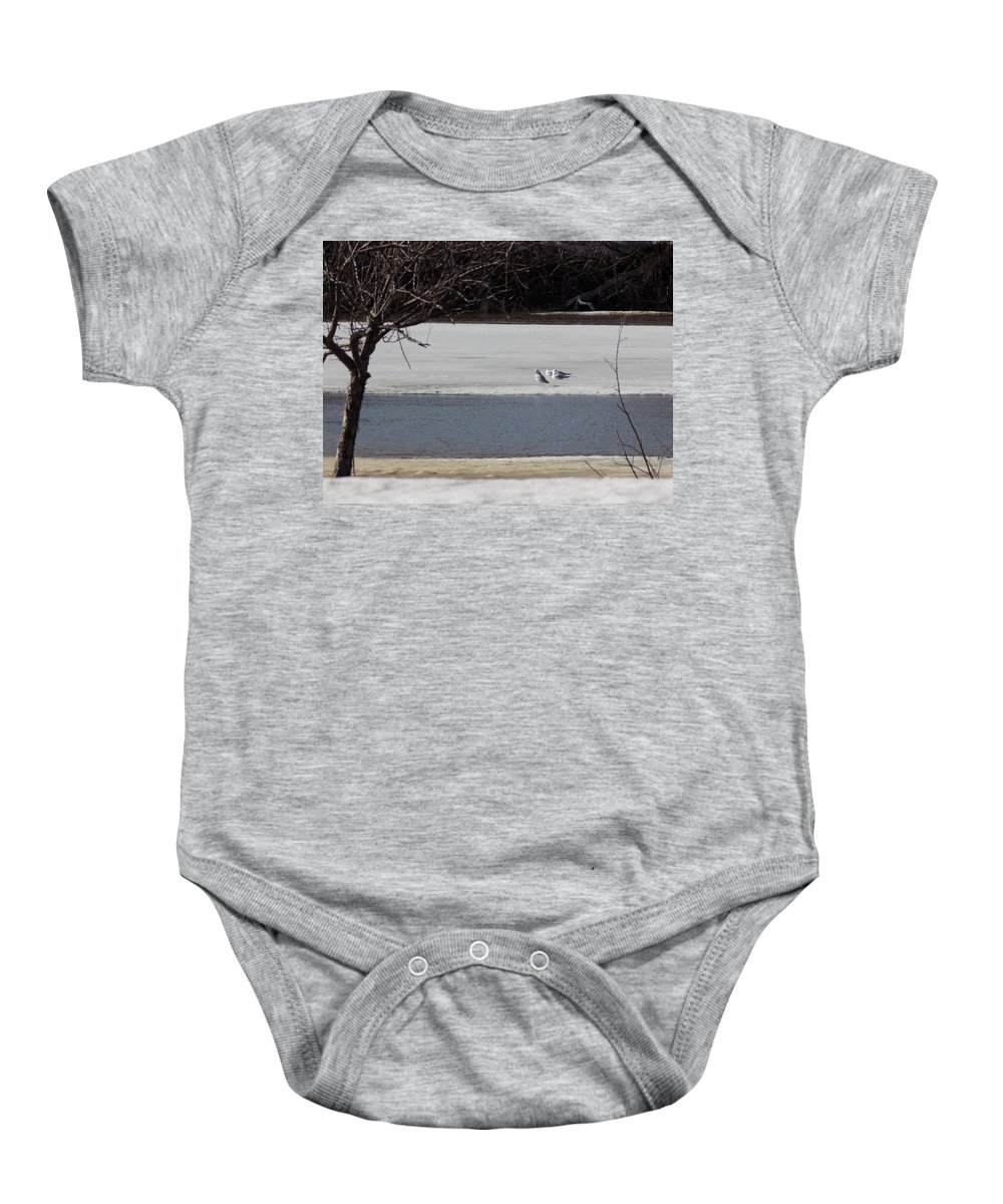 Caribou Mill Pond Baby Onesie featuring the photograph Sleeping Seagulls by William Tasker