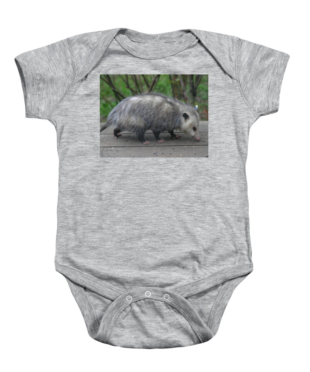 Sniffy The Possum Baby Onesie featuring the photograph Sniffing Around by Kym Backland