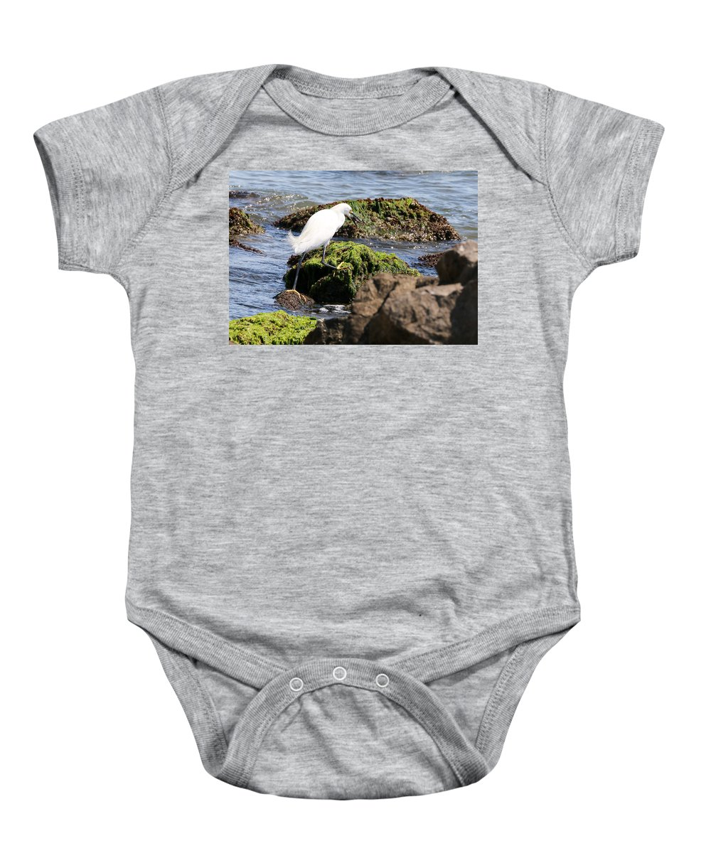 Nature Baby Onesie featuring the photograph Snowy Egret Series 2 3 Of 3 Adjusting by David Mayeau