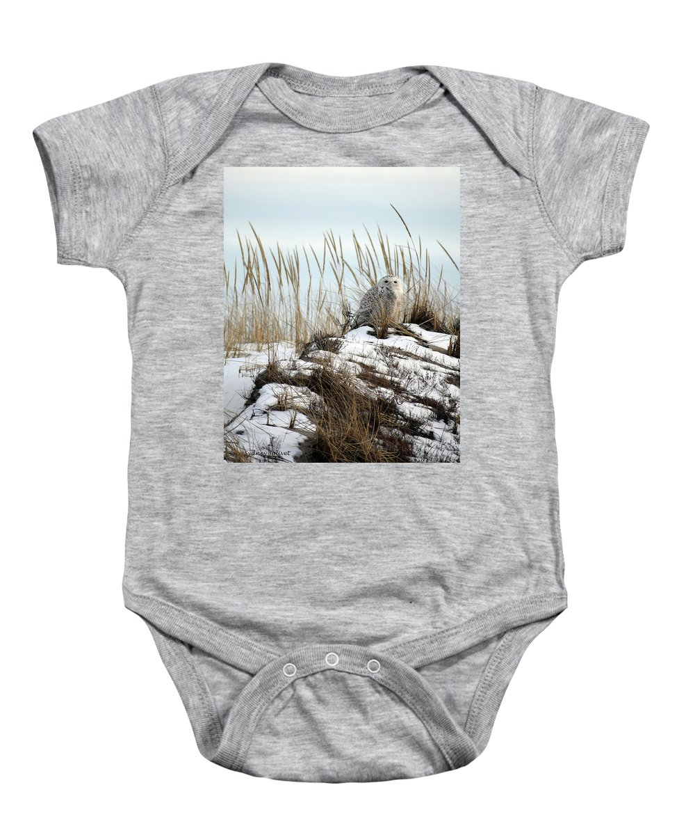 Snowy Owl Baby Onesie featuring the photograph Snowy Owl In Dunes #2 by Sydney Jolivet