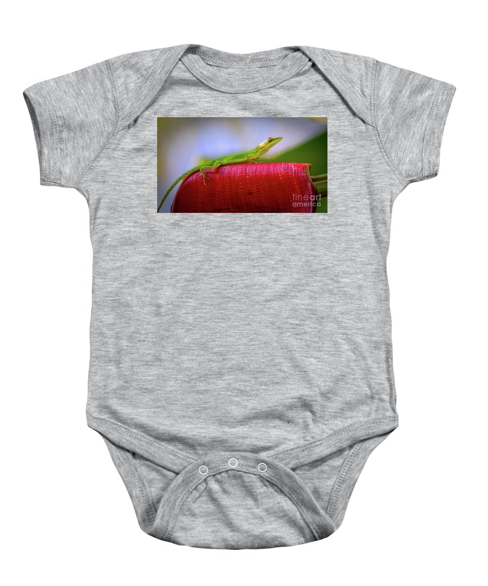 Coco View Resort Baby Onesie featuring the photograph Soaking Up The Sun by Doug Sturgess