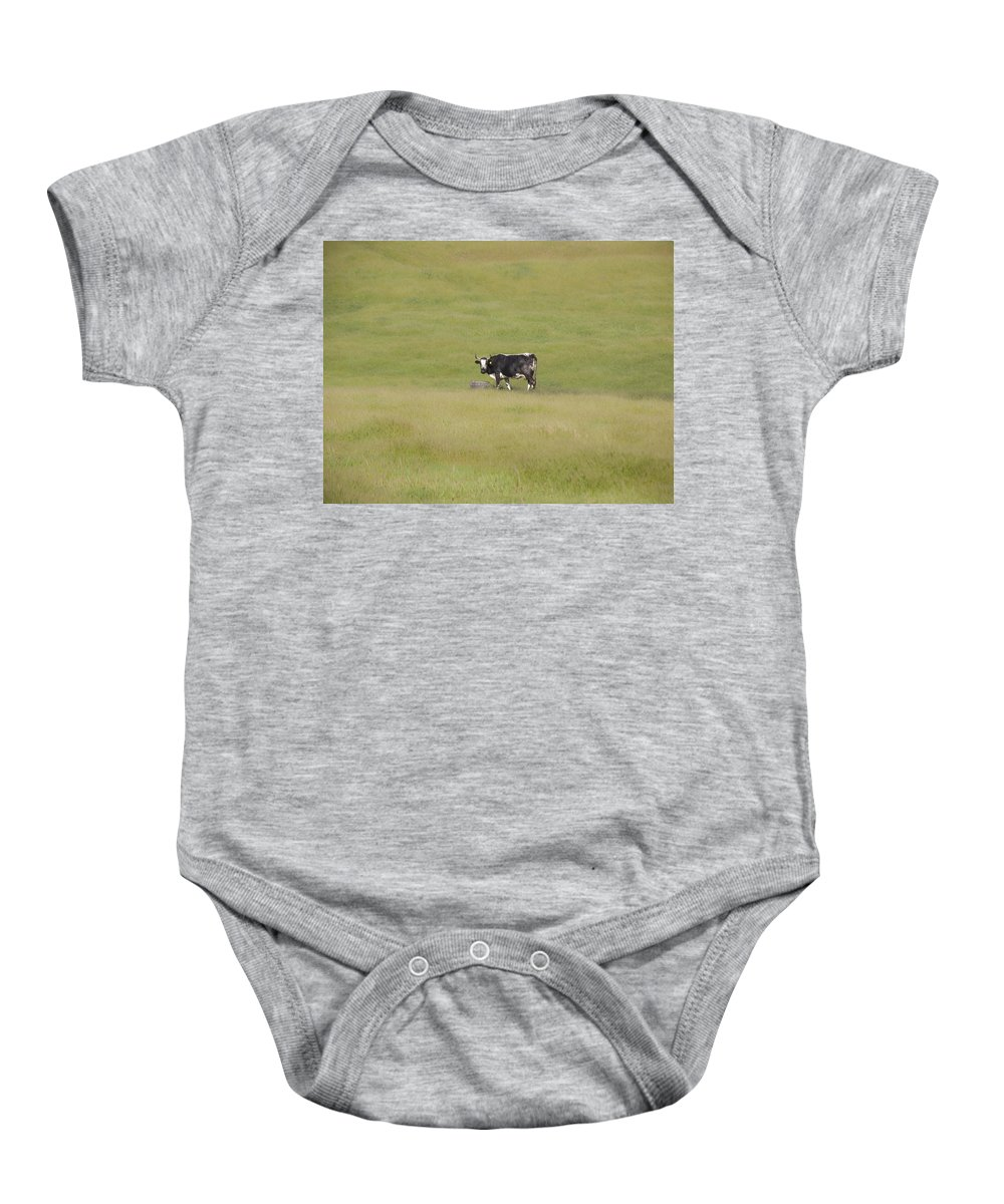 Landscapes Baby Onesie featuring the photograph Solitude by Karen W Meyer