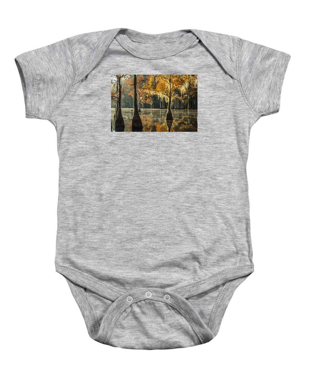 Cyrpess Baby Onesie featuring the photograph Southern Gold by Eric Albright