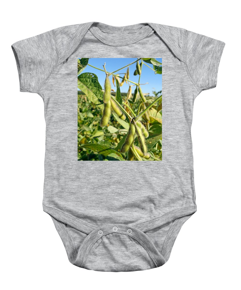 Soybeans Baby Onesie featuring the photograph Soybeans In Autumn by Robert Meyers-Lussier
