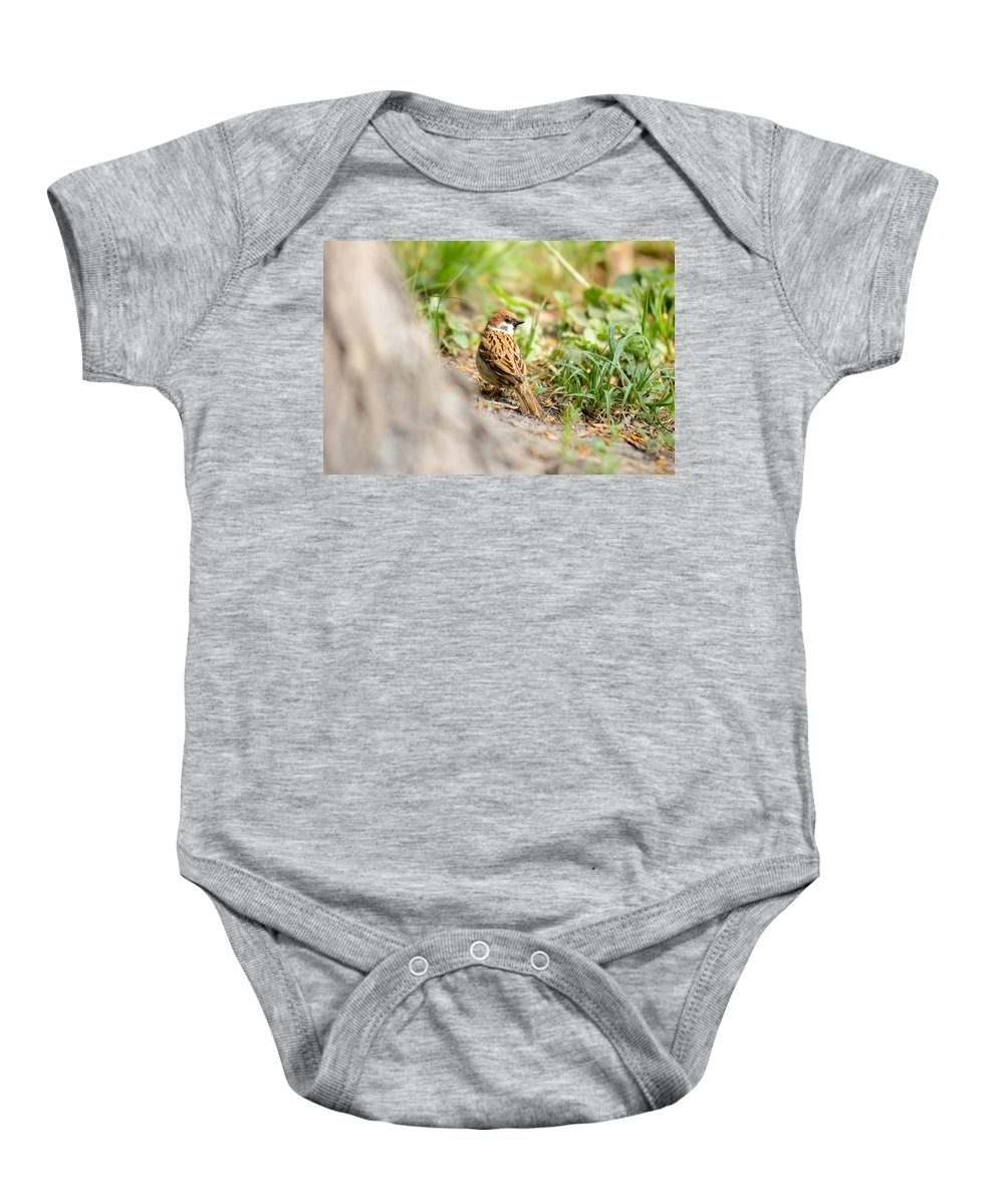 Animal Baby Onesie featuring the photograph Sparrow On The Ground by Alain De Maximy