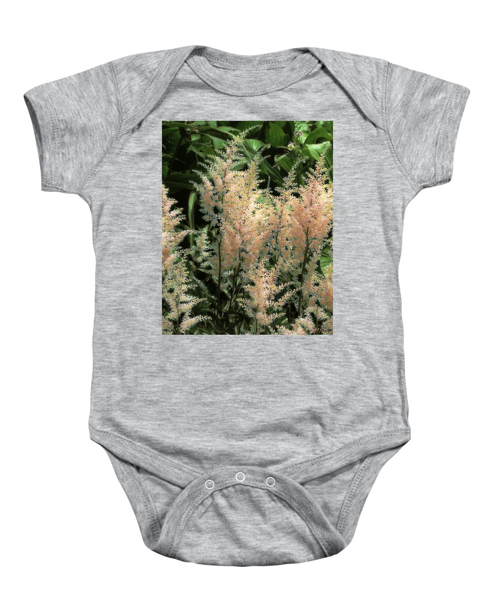 Astilbe Baby Onesie featuring the painting Spikes Sunkissed by RC DeWinter