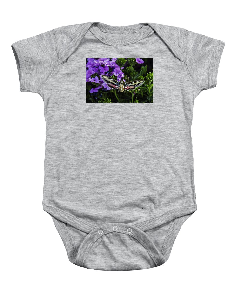 Spinx Moth Baby Onesie featuring the photograph Spinx Moth by Janet Aguila Krause