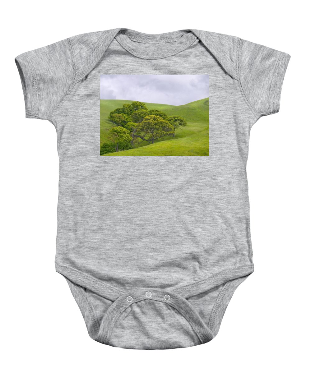 Landscape Baby Onesie featuring the photograph Spring At Del Valle by Karen W Meyer