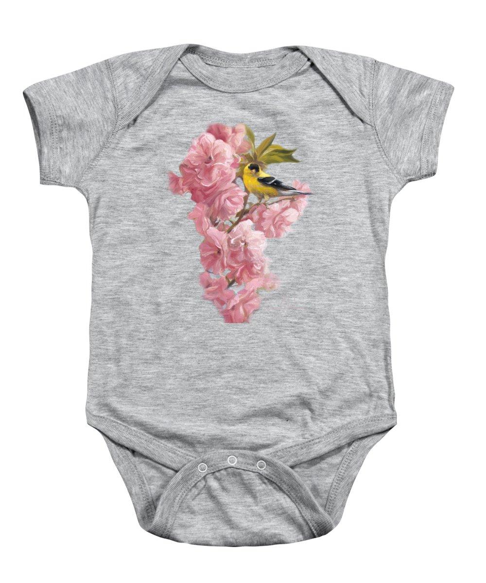 Finch Baby Onesies