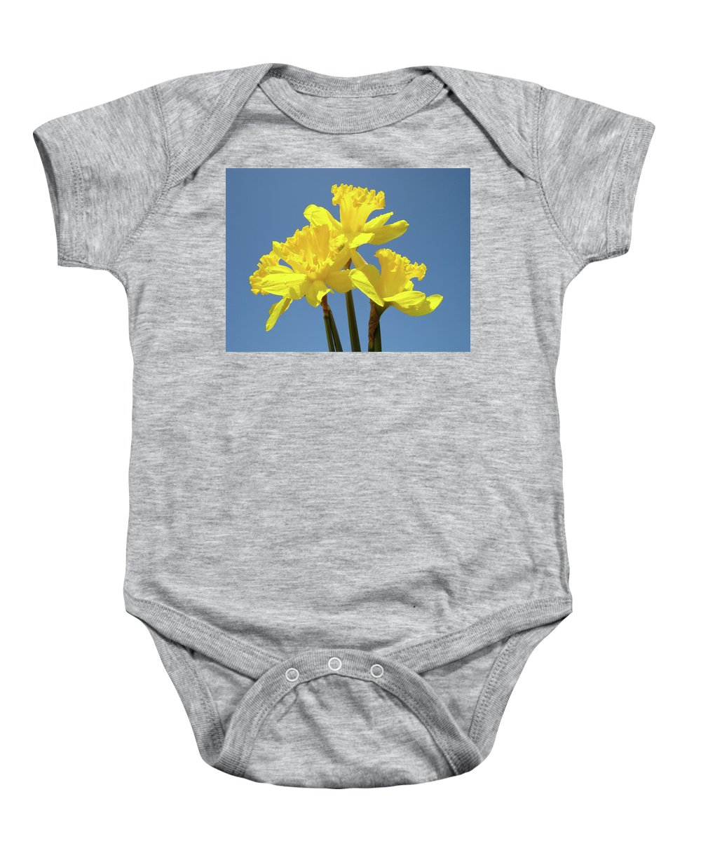Daffodils Baby Onesie featuring the photograph Spring Daffodil Flowers Art Prints Canvas Framed Baslee Troutman by Baslee Troutman
