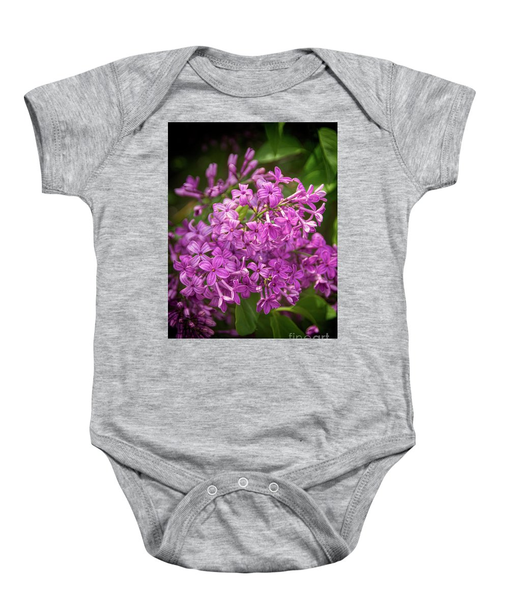 Lilac Baby Onesie featuring the photograph Spring Lilacs On Black by Janice Pariza