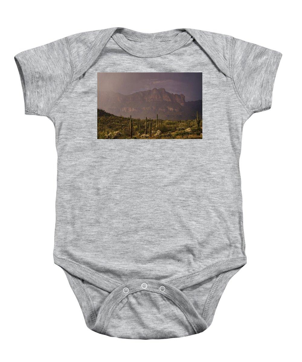 Arizona Baby Onesie featuring the photograph Spring Rain In The Sonoran by Saija Lehtonen