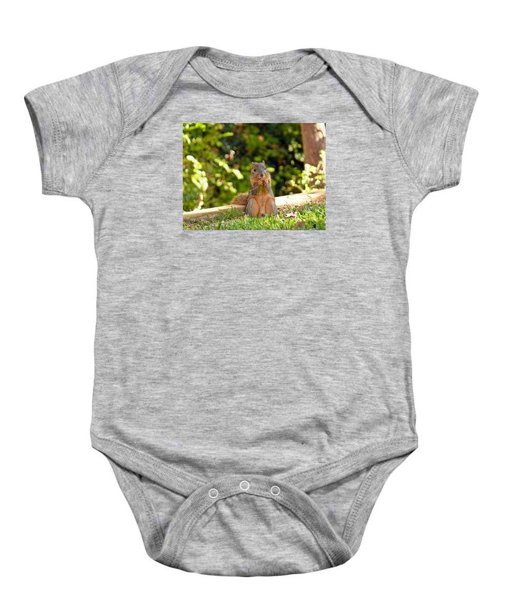 Squirrel Baby Onesie featuring the photograph Squirrel On A Log by Robert Brown