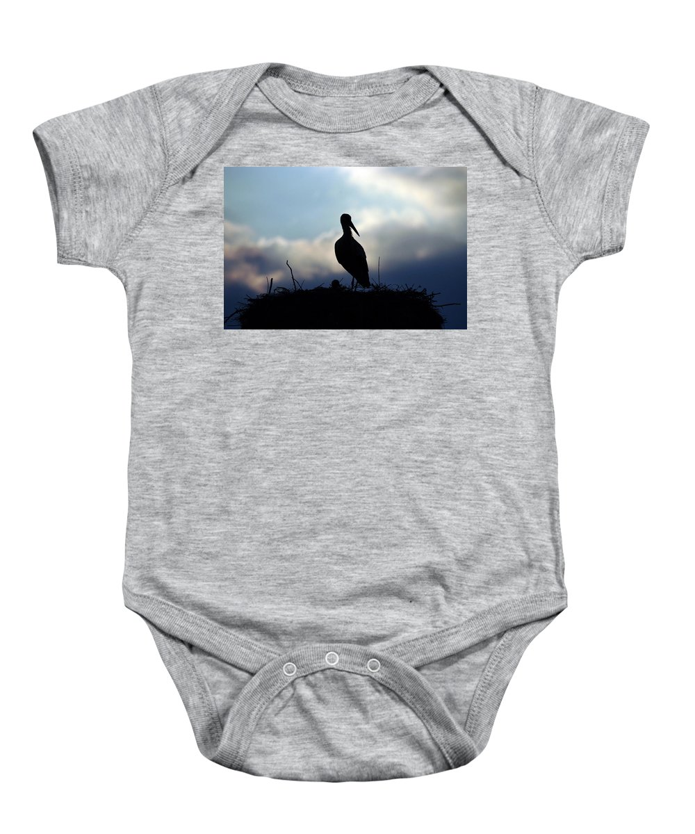 Stork Baby Onesie featuring the photograph Stork In Evening Light by Cliff Norton
