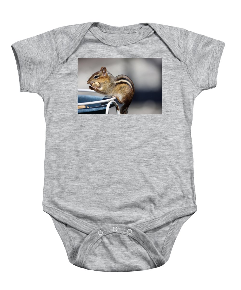 Animals Baby Onesie featuring the photograph Stuff It In by Karol Livote