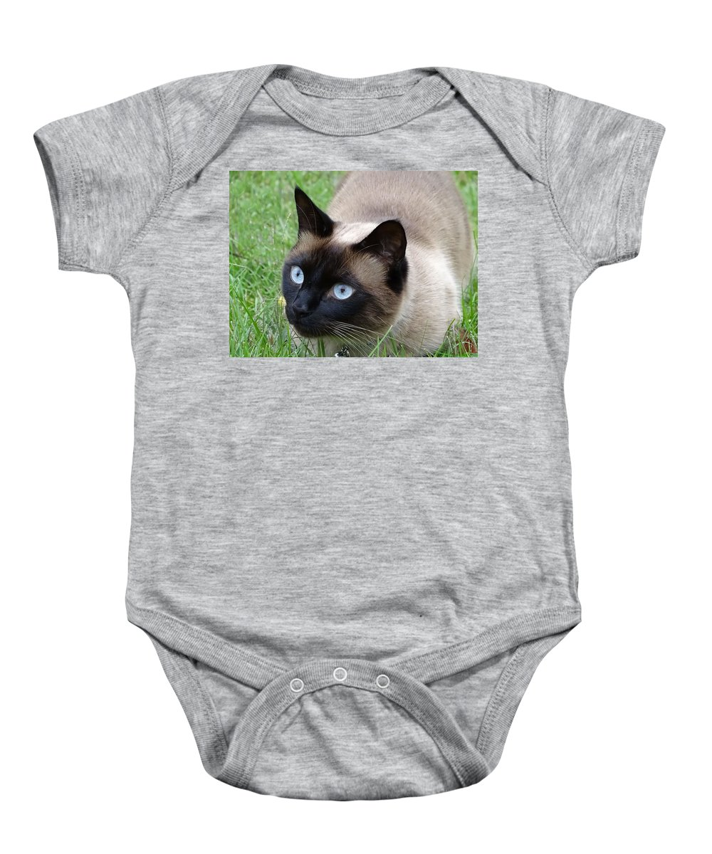 Cat Baby Onesie featuring the photograph Sulley In The Grass by Theresa Campbell