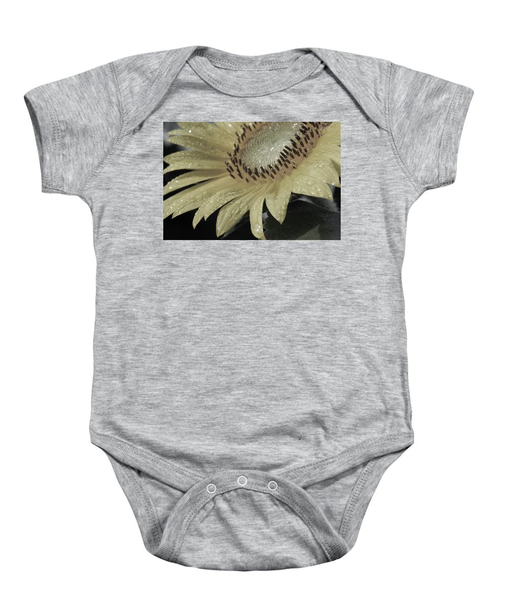 Sun Baby Onesie featuring the photograph Sunflower Rain by Carolyn Stagger Cokley