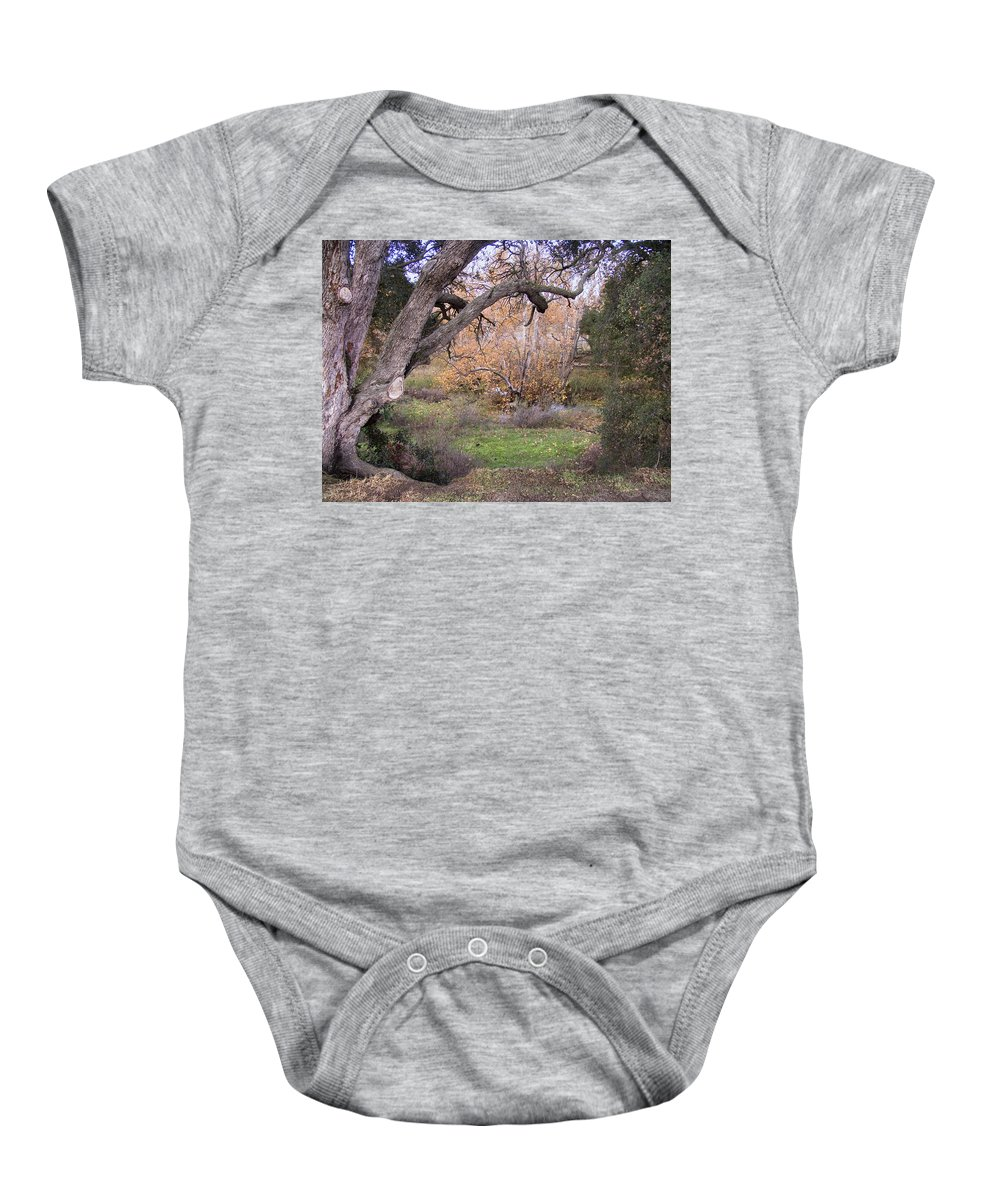 Landscape Baby Onesie featuring the photograph Sycamore Grove Fall by Karen W Meyer