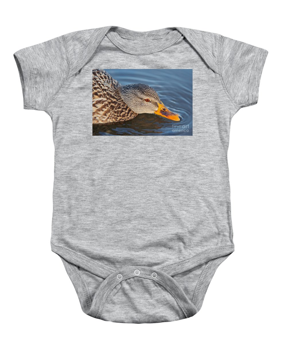 Nature Baby Onesie featuring the photograph Taster by Michal Boubin