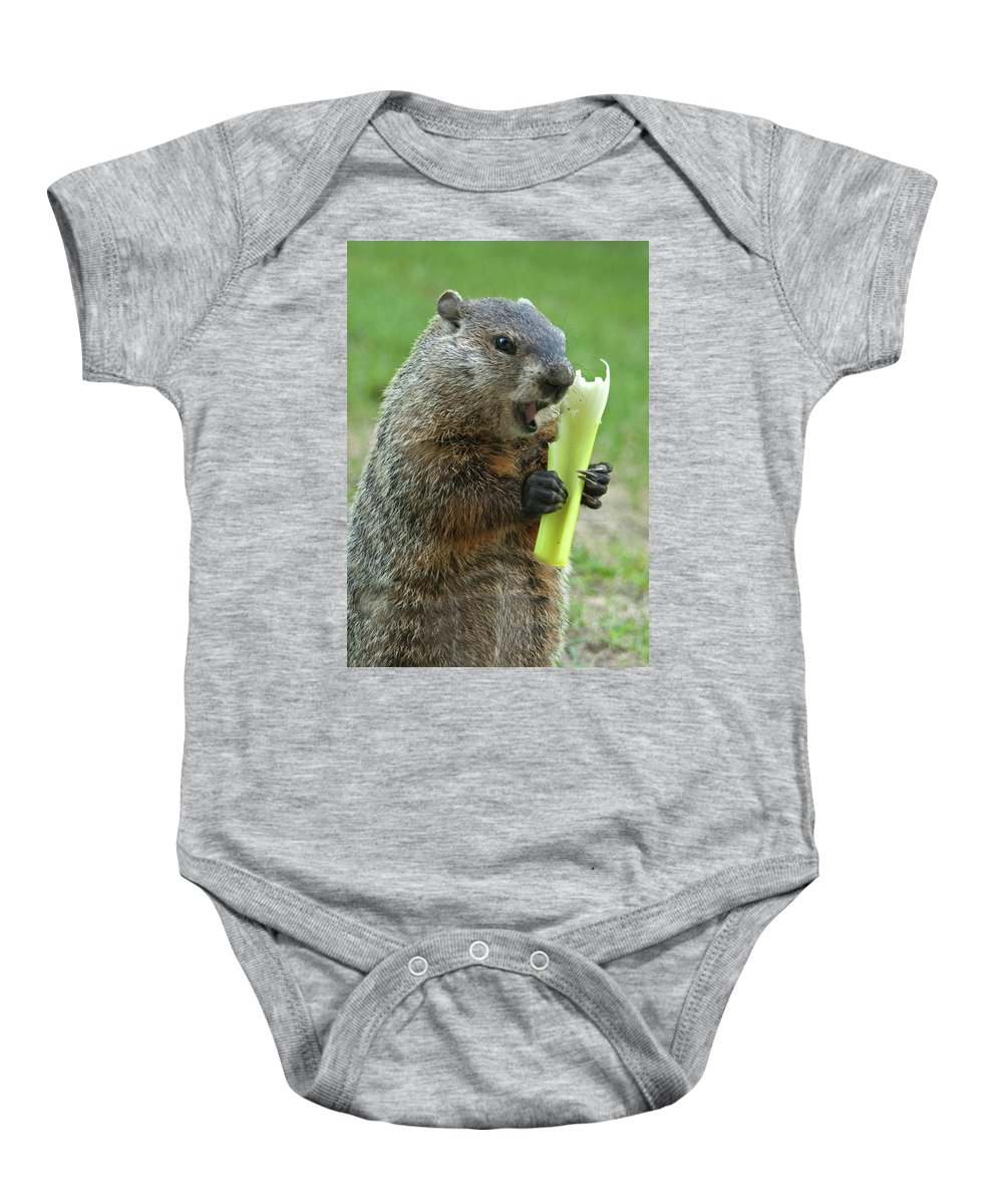 Ground Hog Eating Baby Onesie featuring the photograph Thanks You For Growing A Garden by Paul W Faust - Impressions of Light