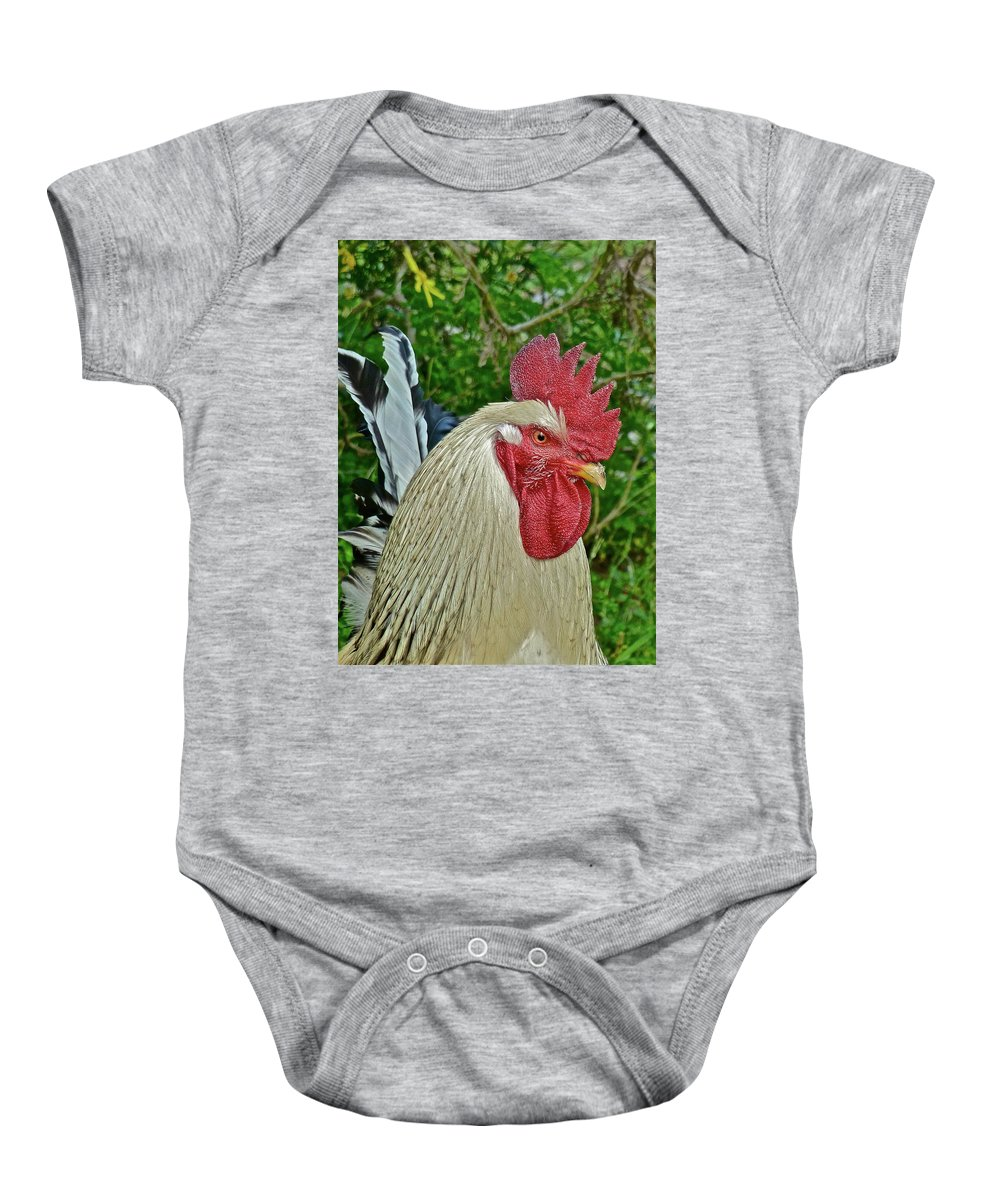 Roosters Baby Onesie featuring the photograph The Boss by Diana Hatcher