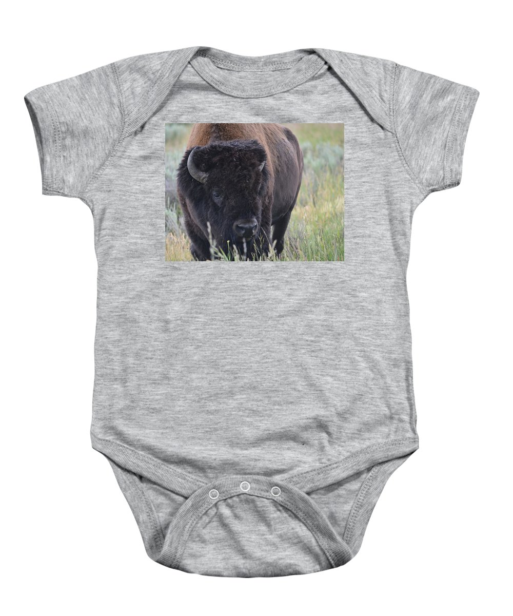 Yellowstone National Park Baby Onesie featuring the photograph The Buff by Sonja Bratz
