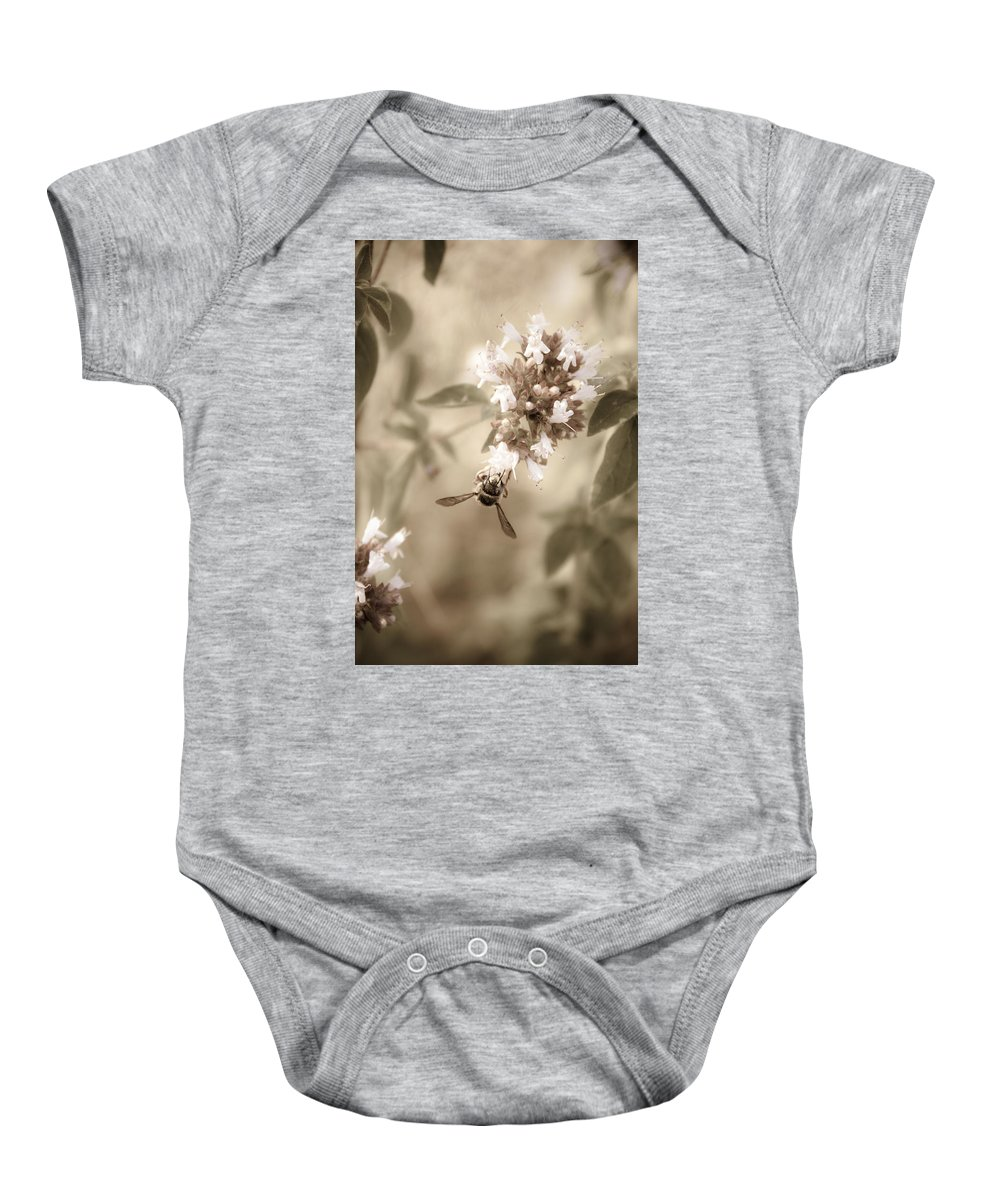 Bee Baby Onesie featuring the photograph The Collector by Danielle Silveira