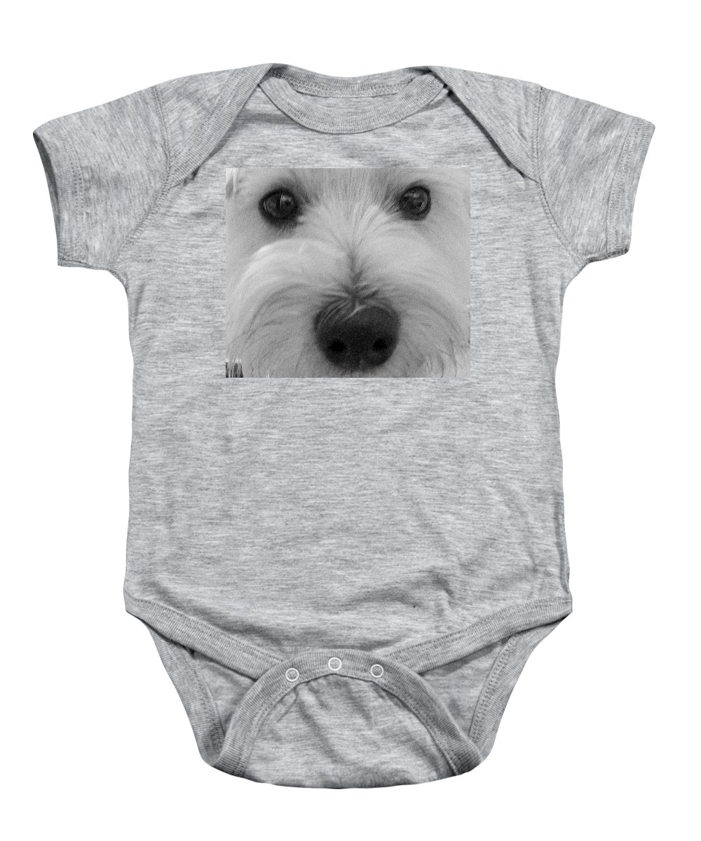 Dog Baby Onesie featuring the photograph The Eyes Have It by Ed Smith