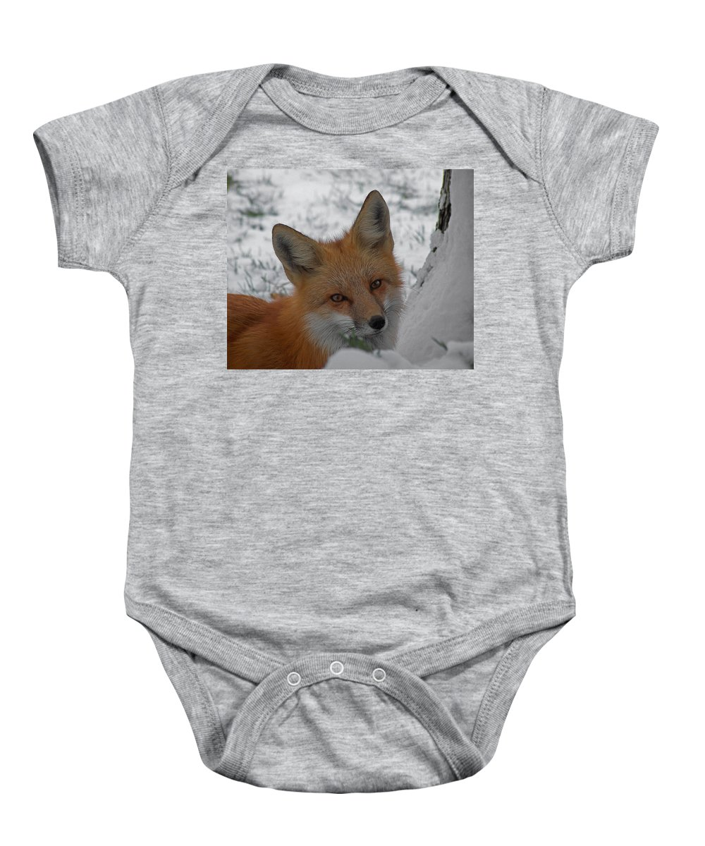 Red Fox Baby Onesie featuring the photograph The Fox 4 by Ernie Echols