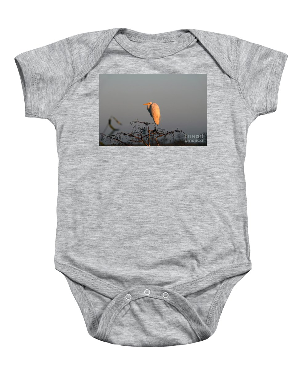 Egret Baby Onesie featuring the photograph The Great Egret by David Lee Thompson