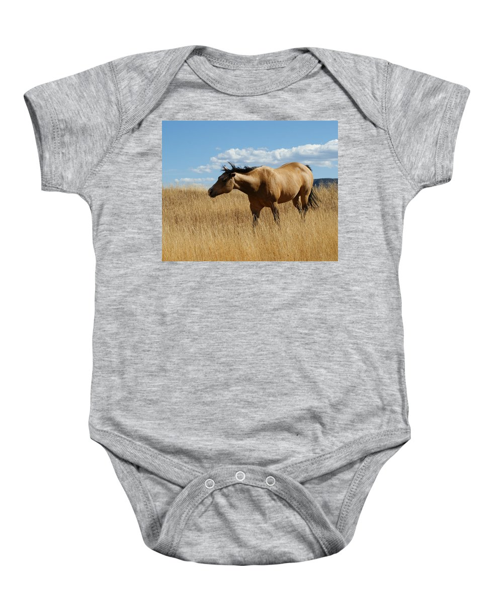 Horse Baby Onesie featuring the photograph The Horse by Ernie Echols