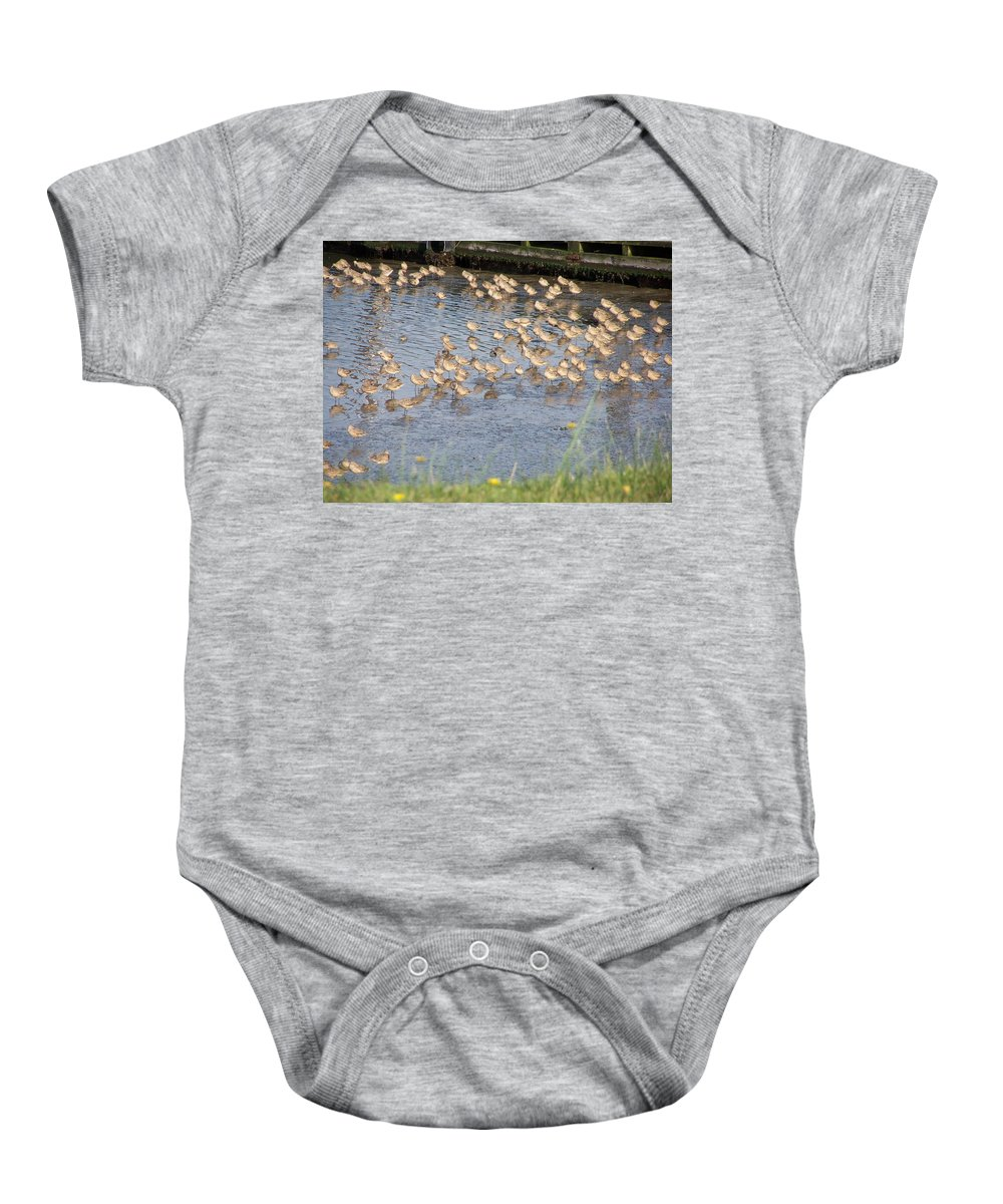 Seabirds Baby Onesie featuring the photograph The Plovers by Laurie Kidd