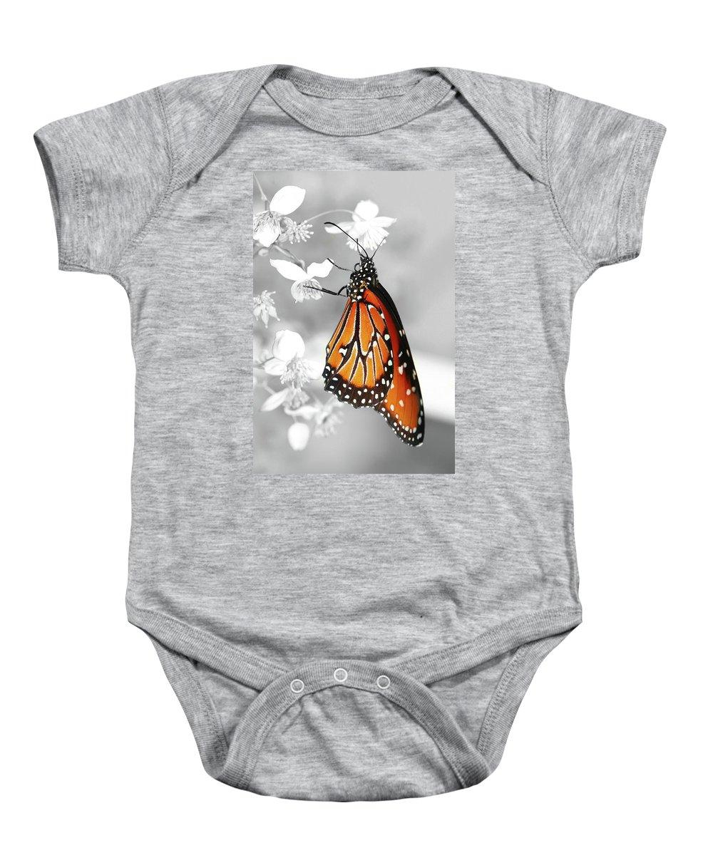 Butterflies Baby Onesie featuring the photograph The Queen by Dennis Goodman